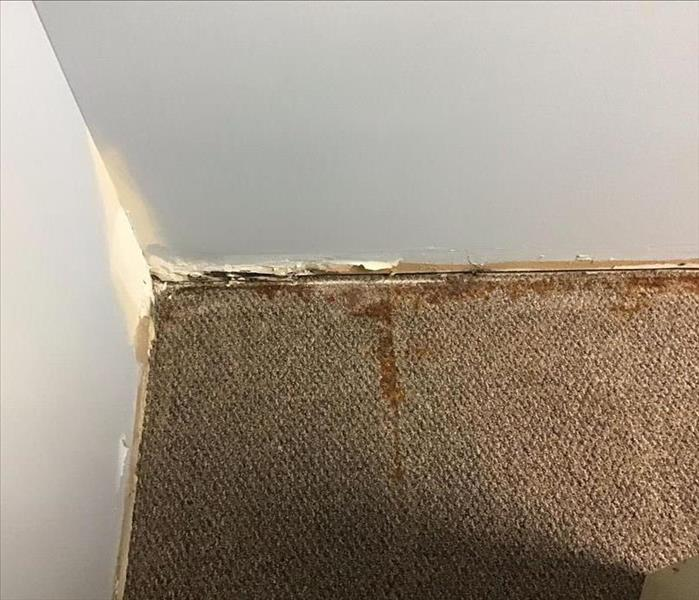 Floor in the corner of an office with rust stained carpet