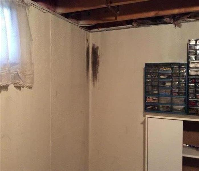 Mold Remediation in Basement in Wyoming, Mi Before